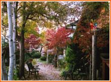 アトリエたんざわの四季「秋色2005」2